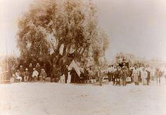 Vista de la tienda de campaña del Ministro de Guerra José Francisco Vergara en Lurín, bajo un árbol, rodeado de hombres y oficiales, Spencer y Cía, 1905