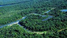 conservação de rios