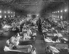 1918 Spanish [swine] flue epidemic killed as many as a hundred million people, six-percent of the World's population.