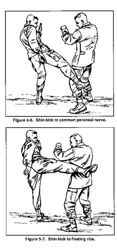 Karate Striking Points Images