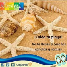 #SabíasQue Los corales y las conchas marinas sirven de protección a muchas especies, además contribuyen a crear playa por eso es importante que no los coleccionemos en casa, sino que los dejemos en su contexto natural. ¡Cuida tu playa! #Acquarell #FlipFlops #Calzados #Estilo #HechoEnVenezuela #Diseño #Venezuela #Usa #Panamá #México #PuntaCana #Colombia #Sandalias #