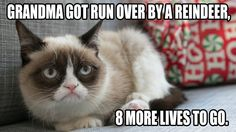 grumpy cat pictures with captions | Grumpy Cat Christmas