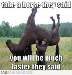Take a horse they said