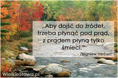 Aby dojść do źródeł, trzeba płynąć pod prąd... #Herbert-Zbigniew,  #Odwaga, #Życie