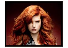 Wedgwood Hair Salon - 8206, 35th Ave. NE Seattle.  206-523-1888.  Haircuts, Color, Bridal Services, Waxing,