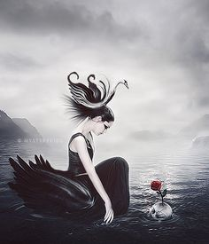 Black Swan by Mysterykids.deviantart.com on @deviantART