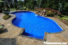 inground pools with diving board and pool basketball hoop | Free Form Swimming Pools