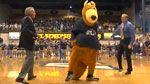 The University of Akron : UA Home
