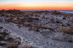 sand dune, sand dunes, beach,beaches,dune,dunes,long island,ny,newy york, nassau county, suffolk county, atlantic ocean, east coast, landscape, nature,natural,seascape,seaboard,jones beach, jone's beach, fire island, robert moses state park, national seashore, sunset,sunsets,sunrise,sunrises, cliff, texture, textures,textured, orange, after hurricane sandy, long island beaches,island sunrise