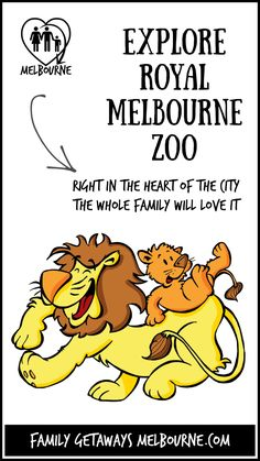 Situated right on the outskirts of the city, the Royal Melbourne Zoo has to be a Melbourne Attraction not to be missed. For more information just click the image. Melbourne Attractions, Melbourne Zoo, Central Business District, Family Getaways, School Holidays, In The Heart, Buy Tickets, Day Trips, Things To Do