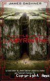 L'épreuve, 1 : Le labyrinthe, de James Dashner. Quand Thomas reprend connaissance, sa mémoire est vide, seul son nom lui est familier… Il se retrouve entouré d'adolescents dans un lieu étrange, à l'ombre de murs infranchissables. Quatre portes gigantesques, qui se referment le soir, ouvrent sur un labyrinthe peuplé de monstres d'acier. Chaque nuit, le plan en est modifié. Thomas comprend qu'une terrible épreuve les attend tous. Comment s'échapper par le labyrinthe maudit sans risquer sa vie…
