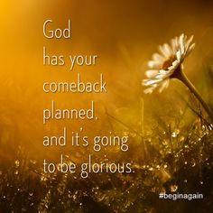 God already has your comeback story planned. You just have to take the first step. You Can Begin Again