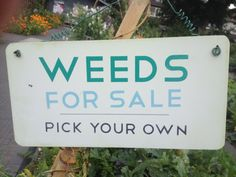 Weeds for sale. Grow
