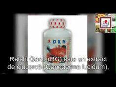 Produse cu Ganoderma DXN în România – Capsule Reishi Gano (RG)