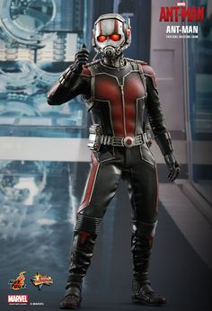 Hot Toys : Ant-Man - Ant-Man 1/6th scale Collectible Figure