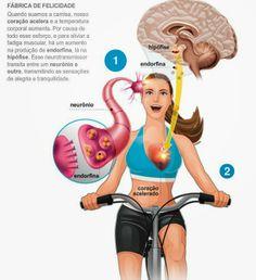 A conexão existente entre a prática de exercícios físicos e a felicidade: