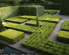 garden forms / repinned on toby designs