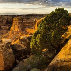 Muley Point Overlook (SW of Moki Dugway), Utah - which sits on a high rim of Cedar Mesa and offers panoramic sweep across Monument Valley and the San Juan River country far below. Photo by Norman Bosworth