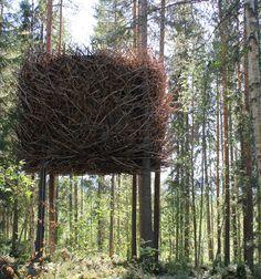 Treehotel - Sweden ..... Tree hotel? Whaaaa????