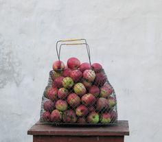 Vintage metal wire basket -  Egg fruits basket - Made in USSR, Soviet era on Etsy, $21.40 CAD