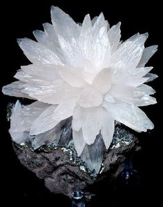 """Calcite~ """"The Stone of Light"""" in a beautiful starburst formation. Calcite is a mineral formation that has traditionally been used for healing and other spiritual uses. It is a clean and vibrant gemstone that creates brilliant and beautiful gem formations. Cool Rocks, Beautiful Rocks, Minerals And Gemstones, Rocks And Minerals, Rock Collection, Mineral Stone, Rocks And Gems, Stones And Crystals, Gem Stones"""