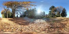 Burnaby Mountain II Outdoor HDRI High Dynamic Range Image in hdr format. 360 degree Spherical Panoramic Image for Image-Based Lighting, CG dome, Environment Map. Autocad 2014, Hdri Images, Environment Map, Dynamic Range, Panoramic Images, Mask For Kids, Mountain, Country Roads