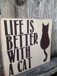 1000+ ideas about Cat Decor on Pinterest | Photo Cat, Cats and Cat ...