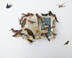 Birds and butterflies in the work of Louise Richardson