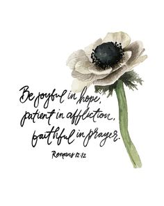 Romans Hand Lettered and Watercolor Art Print Anemone Flower Bible Art, Scripture Verses, Bible Verses Quotes, Bible Scriptures, Scripture Images, Prayer Quotes, Spiritual Quotes, Faith Quotes, Thursday Quotes