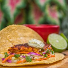 Blackened tilapia tacos with jicama coleslaw avocado aioli and chipotle black beans a festive Mexican fiesta! Fish Recipes, Mexican Food Recipes, Ethnic Recipes, Seafood Recipes, Pepper Recipes, Onion Recipes, Carrot Recipes, Cabbage Recipes, Avocado Recipes