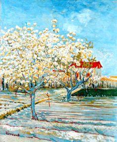 Vincent Van Gogh - Post Impressionism - Arles - Pêchers en fleurs.