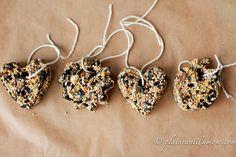 Bird Seed Feeders - Plain Vanilla Mom
