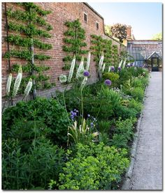 Love the different heights and greens used in this border - The Painted Blackbird