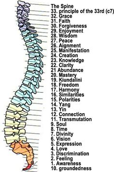 Spinal Chakra Points!  Maybe get these tattoos on the spot on the spine?