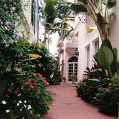 Brambles tea room, Naples, FL; Great place to slow down. Tucked off in the corner off 5th Street.
