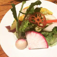 無農薬野菜のサラダ
