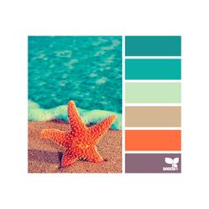 Design Seeds featuring polyvore design seeds backgrounds colors colours pictures fillers