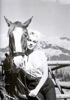 the love of her horse marilyn monroe