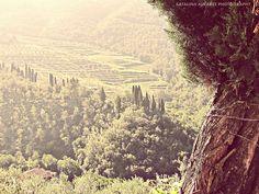 Tobbiana - Tuscany