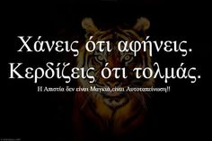 Greek Quotes, Words, Poster, Billboard, Horse