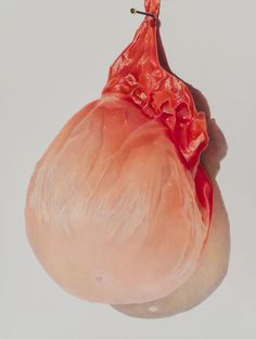 Julia Randall - Julia Randall, Pinned Apricot, Photorealist colored pencil drawing, 2013 Lovely Nails lovely nails new milford ct Making Charcoal, Still Life Fruit, Create Drawing, Still Life Drawing, Illusion Art, Art Sketchbook, Colored Pencils, Pencil Drawings, Bubbles