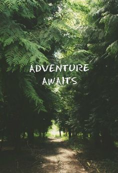 #travel #quotes #adventure