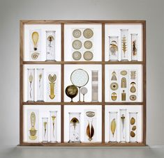 All images courtesy Joanna Bird Gallery unless otherwise noted As a child, Danish artist Steffen Dam loved poring over his grandparents' collection of scientific books and cabinets of insects. This fascination of how we catalogue and understand the natural world followed through to his artisti