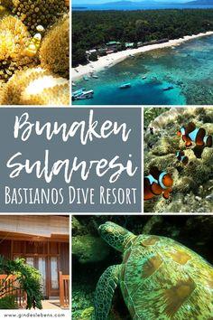 Bastianos Dive Resort Bunaken Tauchen im Norden von Sulawesi Jimbaran Bali, Tromso, Ubud, Bangka, Phuket, Dive Resort, Koh Tao, Lombok, Diving