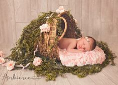New Ideas For New Born Baby Photography : Nene - NewBorn - Newborn Photography Baby Poses, Newborn Poses, Newborn Shoot, Newborns, Baby Girl Photos, Cute Baby Pictures, Newborn Pictures, Foto Newborn, Baby Girl Newborn