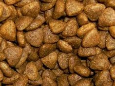 Homemade Dry Cat Food Recipe (Kibble)