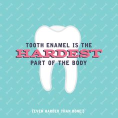 DID YOU KNOW that tooth enamel is the hardest substance in your entire body? Help your kids' enamel  stay that way with good oral health habits like brushing and flossing, healthy eating, and regular visits to Colorado Kids Pediatric Dentistry!  303-791-4400!