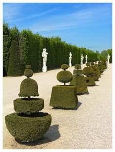 Bushes of Versailles, the inspiration for the bushes outside the Grey/Endicott estate.
