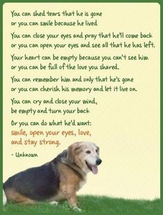 Help me to remember this Lord,when I miss you Maggie, Molly, Daisy and especially my baby, Alvin. Dog Quotes, Animal Quotes, Westies, Beagles, I Love Dogs, Puppy Love, Big Dogs, Pet Poems, Pet Loss Grief
