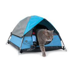 The Minature Cat Tent. The most exceptionally comfortable, durable, cutest cat hideaway tent.
